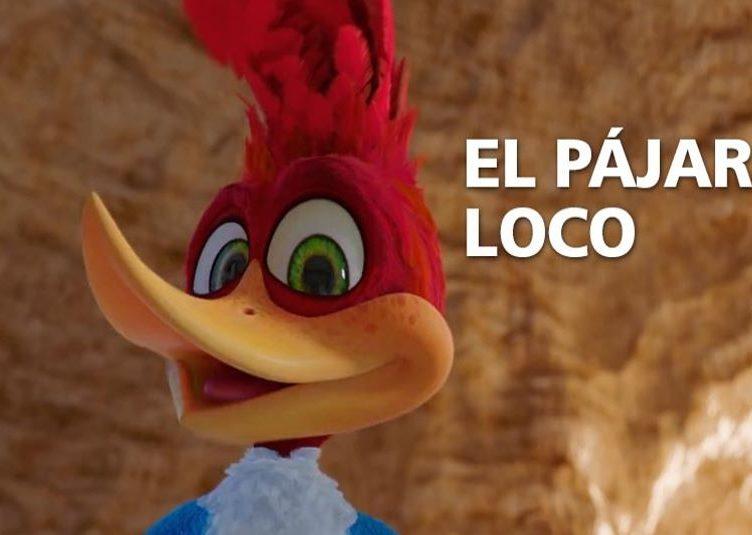 pajaro loco